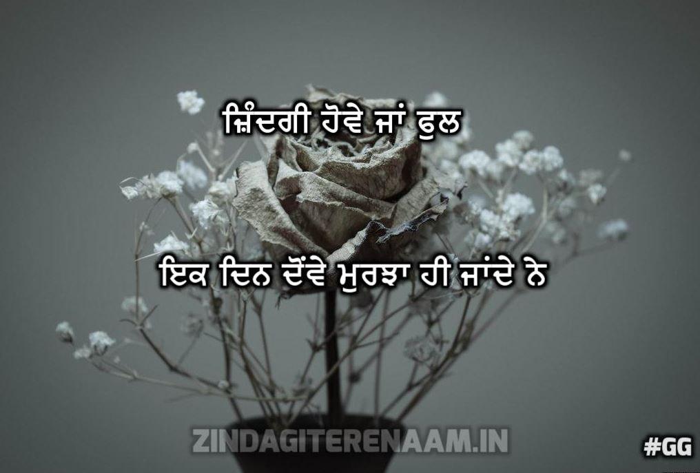 Sachi Zindagi Shayari | Zindagi howe ja ful ik din dowe murjha hi jande ne