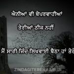 AINIYAN V BEPARWAHIYAN || True Lover Shayari image