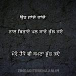 HAUKE THAMNA BHUL GAYE || Shayari from Heart