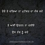 Rang nu || 2 lines punjab true shayari