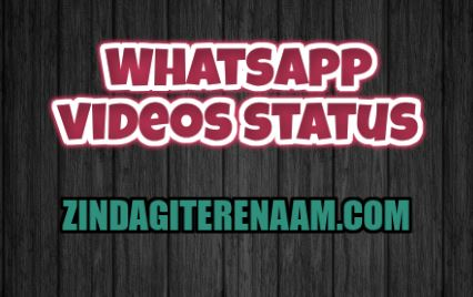Whatsapp video status || view and download and share on whatsapp or facebook story