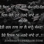 Tere ishq ch marde jande haan || Punjabi status || shayari images
