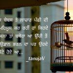 Honsla ta bthera Lachaar panchhi || Punjabi shayari pic