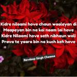 Kidre nilami hove ||  Punjabi True lines Shayari