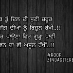 Asool nibhawan da || true line shayari || Punjabi status
