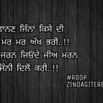 Mohobbat jinni dilon Kari || true line shayari || Punjabi status