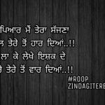 Tere ton vaar deyan || true love Punjabi shayari || Punjabi status