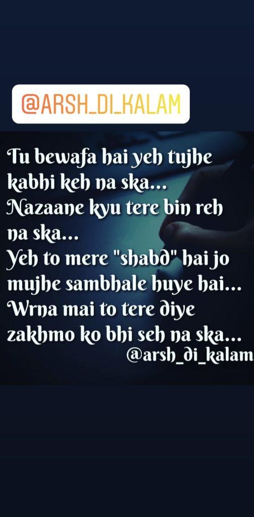 Tu bewafa hai yeh tujhe || hindi shayari