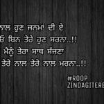 Tere naal jiona || true love Punjabi shayari || Punjabi status
