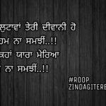 Veham na samjhi || love Punjabi status || true lines