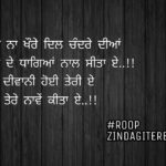 Ik jaan deewani teri || true love Punjabi status || ghaint shayari